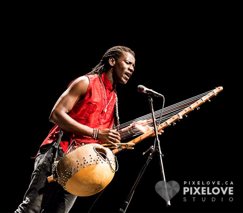 Festival Internacional Afrika Fusion