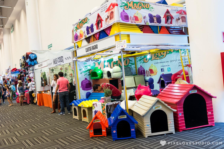 Expo Canina 2017 en el Centro de Congresos de Queretaro. Club Canofilo Corregidora en Queretaro.